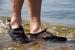 Trespass uimatossut aikuisille
