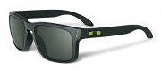 Oakley Holbrook Steel w/ Dark Gray